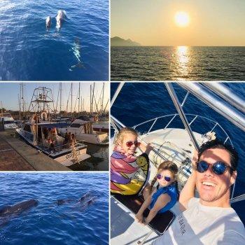 Een dag tussen de dolfijnen en walvissen